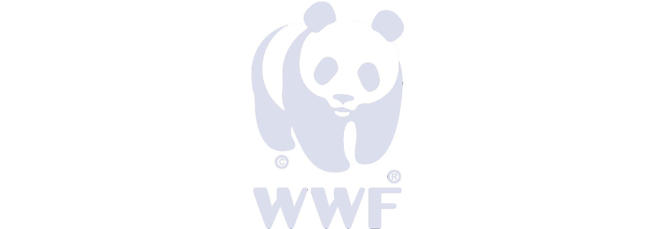 WWF logo, one of FifthIngenium clients